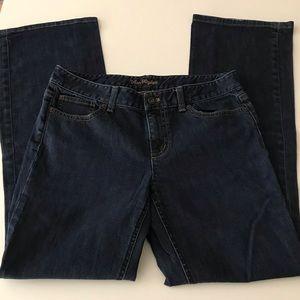 Ann Taylor Modern Fit Bootcut Jeans
